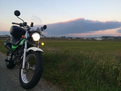 バンバン、農道を走る