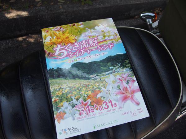 ゆりの花のフェスティバル