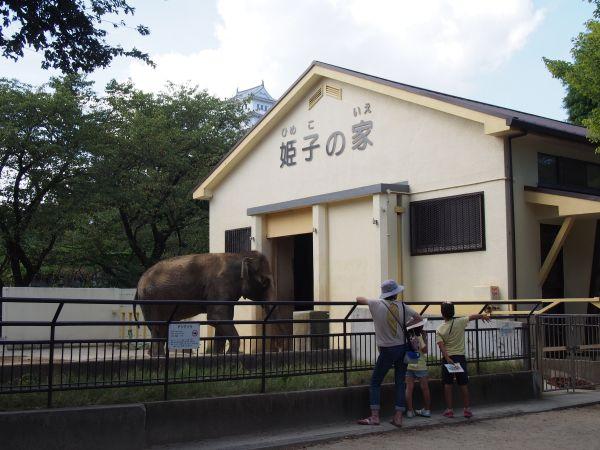象の姫子の家