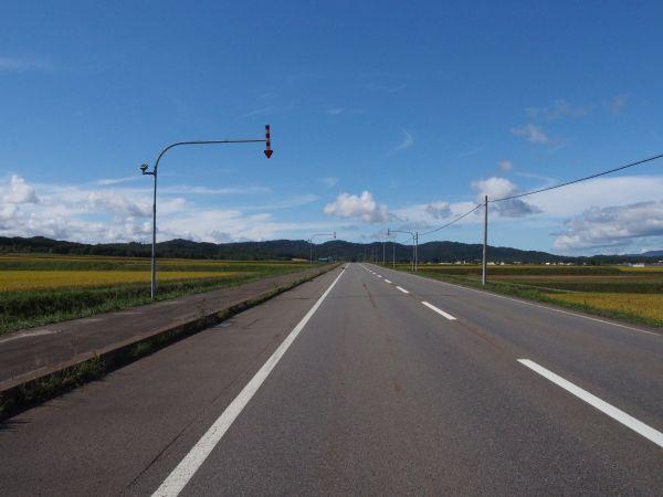 北海道の道やね