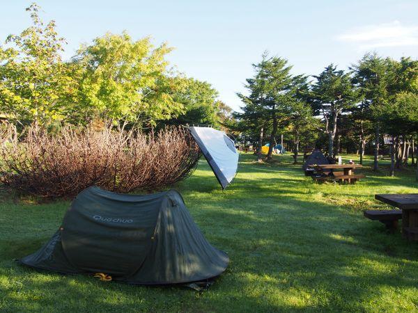 稚内森林公園キャンプ場の朝