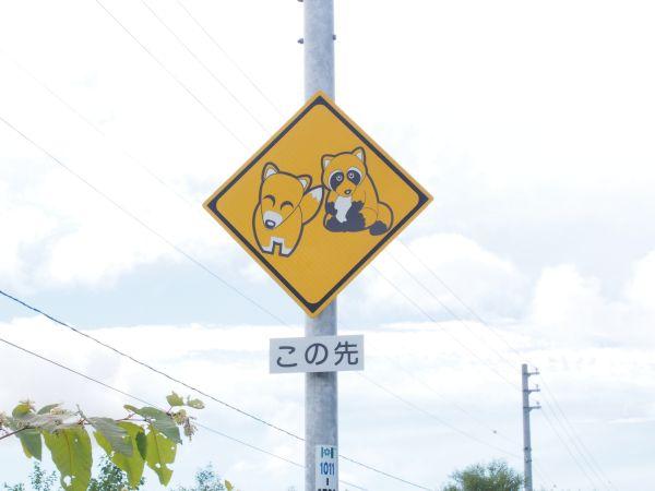 動物注意?!(笑)