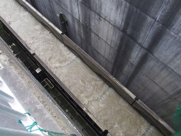 二風谷ダム、ダムの水位によって上下