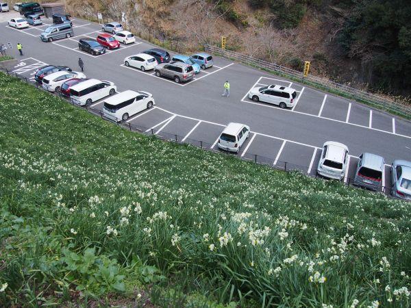 灘黒岩水仙郷駐車場