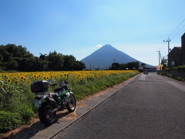 開聞岳とひまわり畑@鹿児島県
