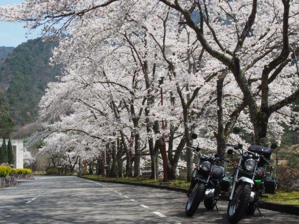 R429・青垣峠からの走ったことなかった気持ちの良い道見つけた!@兵庫