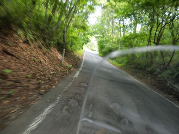 トドヶ埼へ向かう道