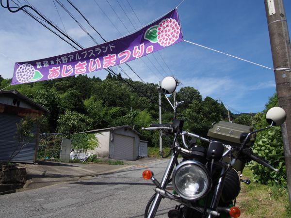 無料キャンプ場もある!大野山アルプスランドへ紫陽花ツーリング@兵庫