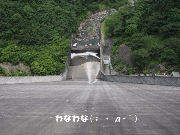 長谷ダム高い!!