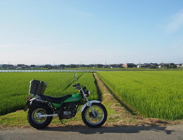 バンバンと農道