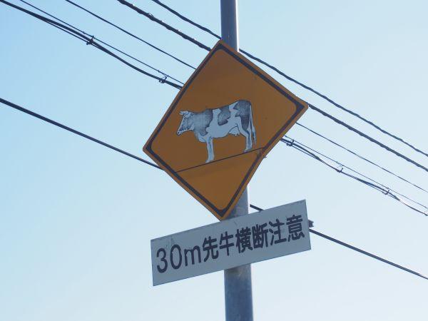 うしさんの標識、北海道らしい