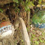 わたしがそれまで興味がなかった沖縄を好きになった話