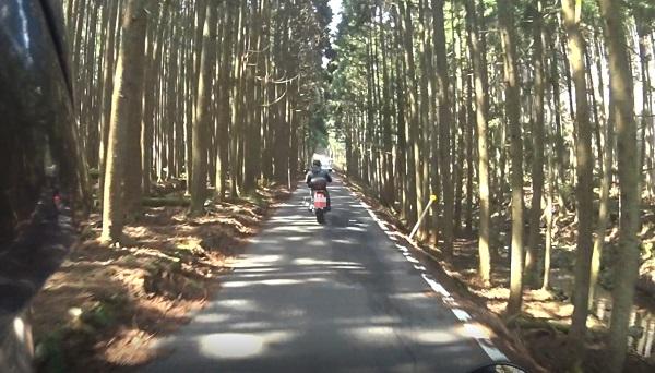 青垣峠、丹波側の狭路