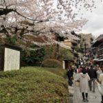 京都のお花見は、電車(地下鉄)と歩きに限る件(*・ω・)