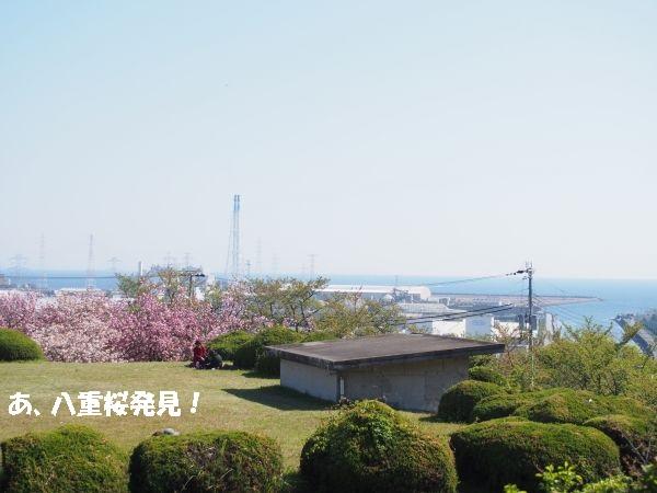 兵庫県高砂市日笠山