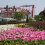 新しい道の駅ができた!ファームサーカスに行ってきた(フルーツフラワーパーク)@兵庫県神戸