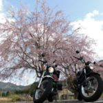 2018桜ツーリング・まとめ【バンバンズ200】