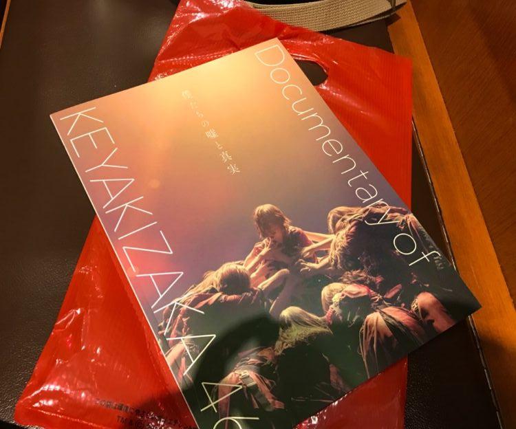 【ネタバレ注意】映画『僕たちの嘘と真実 Documentary of 欅坂46』観てきた